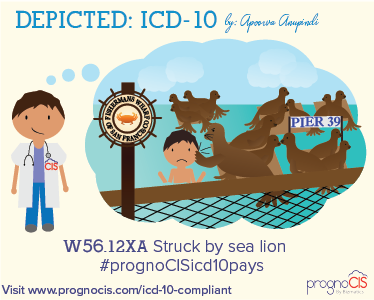ICD-10 Grace Period Ending, What You Can Do to Prepare